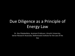 Due Diligence as a Principle of Energy Law