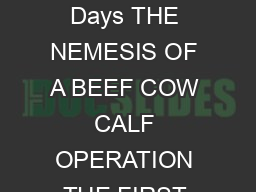 Minnesota Beef CowCalf Days THE NEMESIS OF A BEEF COW CALF OPERATION THE FIRST CALF COW G