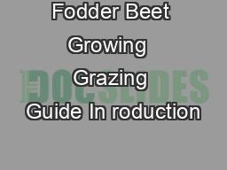 Fodder Beet Growing  Grazing Guide In roduction