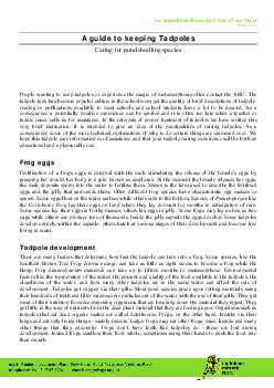An Amphibian Research Centre Care Sheet Page  of  A guide to keeping Tadpoles Caring for ponddwelling species People wanting to keep tadpoles or experience the ma gic of metamorphosis often contact th