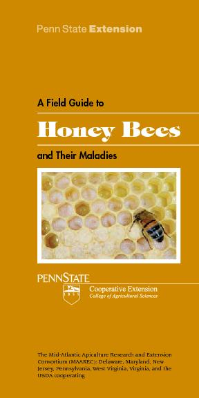 Honey Bees Jersey, Pennsylvania, West Virginia, Virginia, and the  ...