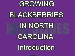 North Carolina Cooperative Extension Service North Carolina State University GROWING BLACKBERRIES IN NORTH CAROLINA  Introduction The blackberry has a long and interesting history in North Carolina