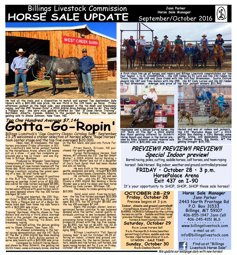 We update our webpage daily with new horses!