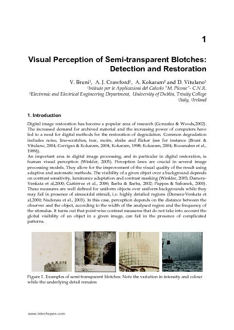 1 Visual Perception of Semi-transparent Blotches: Detection and Restor