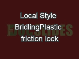 Local Style BridlingPlastic friction lock