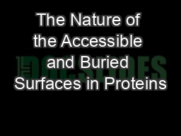 The Nature of the Accessible and Buried Surfaces in Proteins
