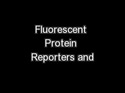 Fluorescent Protein Reporters and