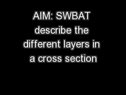 AIM: SWBAT describe the different layers in a cross section