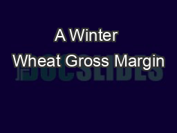 A Winter Wheat Gross Margin