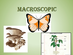 Macroscopic