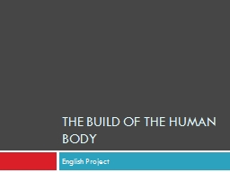 The build of the human body PowerPoint PPT Presentation