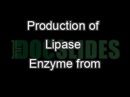 Production of Lipase Enzyme from