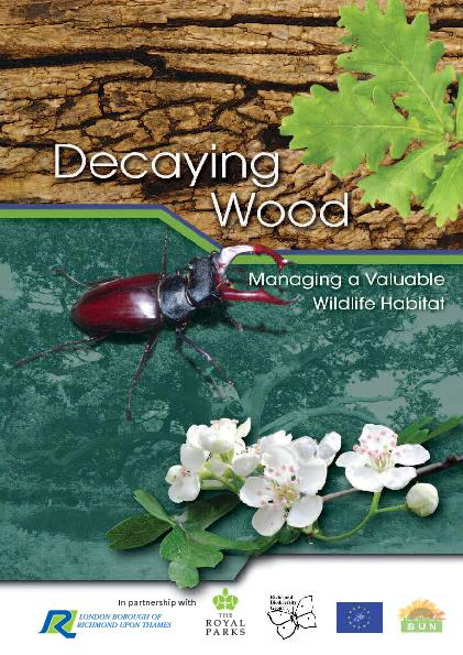 Heartwood Decay