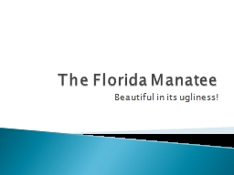 The Florida Manatee PowerPoint PPT Presentation