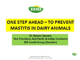 ONE STEP AHEAD – TO PREVENT MASTITIS IN DAIRY ANIMALS