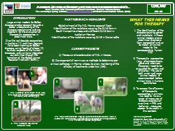 Animal Models: Sheep, cattle and horses with NCL