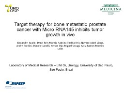 Target therapy for bone metastatic prostate cancer with Mic