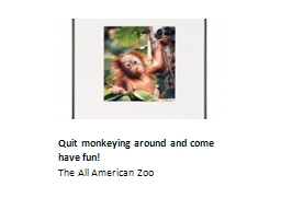 Quit monkeying around and come have fun!