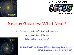 Nearby Galaxies: What Next?