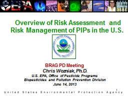 1  Overview of Risk Assessment and Risk Management of PIPs