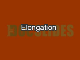 Elongation & Termination of Protein Synthesis (5.1)