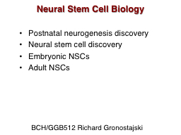 Neural Stem Cell Biology
