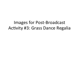 Images for Post-Broadcast Activity #3: Grass Dance Regalia