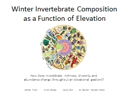 Winter Invertebrate Composition as a Function of Elevation PowerPoint PPT Presentation