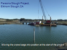 Parsons Slough Project,