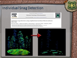 Individual Snag Detection PowerPoint PPT Presentation