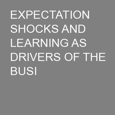 EXPECTATION SHOCKS AND LEARNING AS DRIVERS OF THE BUSI