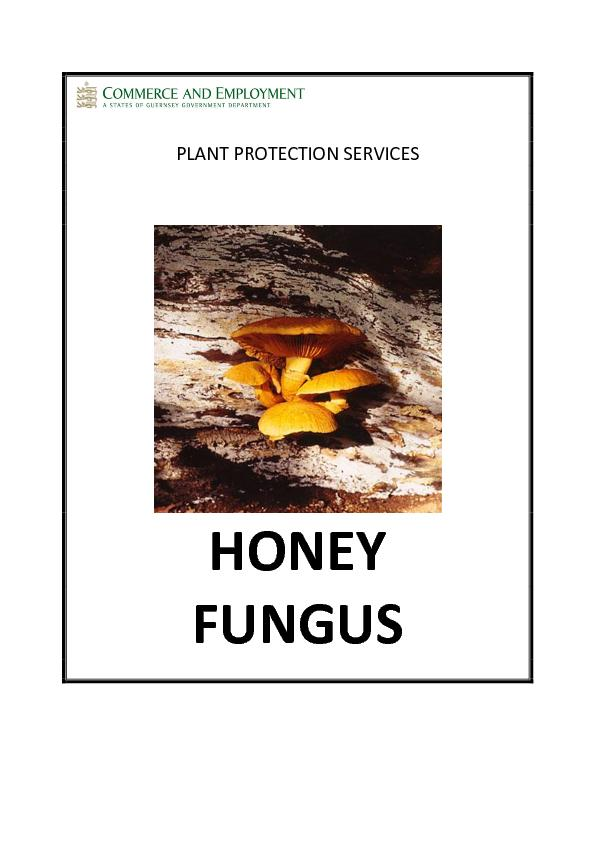 PLANT PROTECTION SERVICES