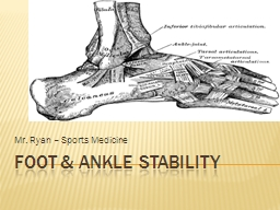 FOOT & ANKLE STABILITY