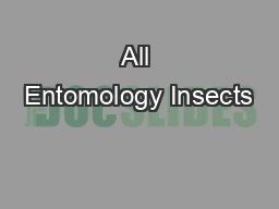 All Entomology Insects