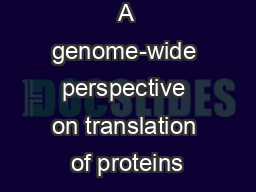 A genome-wide perspective on translation of proteins