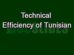 Technical Efficiency of Tunisian PowerPoint PPT Presentation