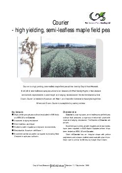 Crop & Food ResearchhBROAD sheet117 September 1999Key featuresHigh yie