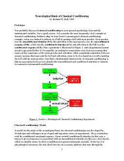 Neurological Basis of Classical Conditioning classical conditioningfun