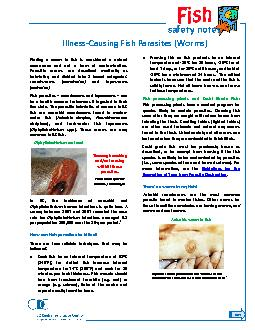 IllnessCausing Fish Parasites (Worms)Finding a worm in fish is conside
