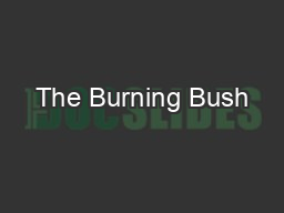 The Burning Bush—Online article archive