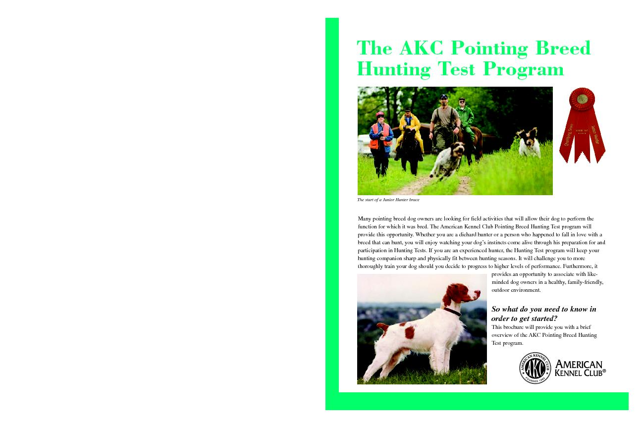 More InformationThe AKC Pointing Breed Hunting Test program began in 1 PowerPoint PPT Presentation