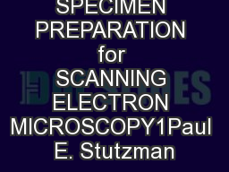 application of scanning electron microscope pdf