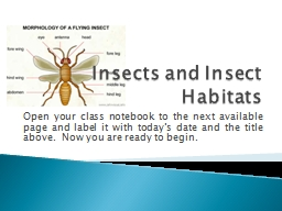 Insects and Insect Habitats