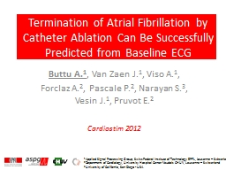Termination of Atrial Fibrillation by Catheter Ablation Can