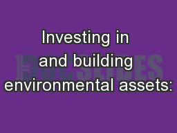 Investing in and building environmental assets: