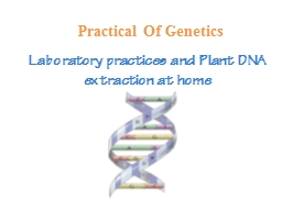 Laboratory practices and Plant DNA extraction at home PowerPoint PPT Presentation