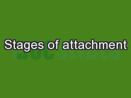 Stages of attachment