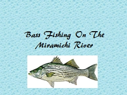 Bass Fishing On The Miramichi River