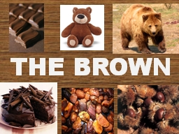 THE BROWN PowerPoint PPT Presentation