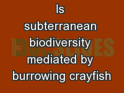 Is subterranean biodiversity mediated by burrowing crayfish